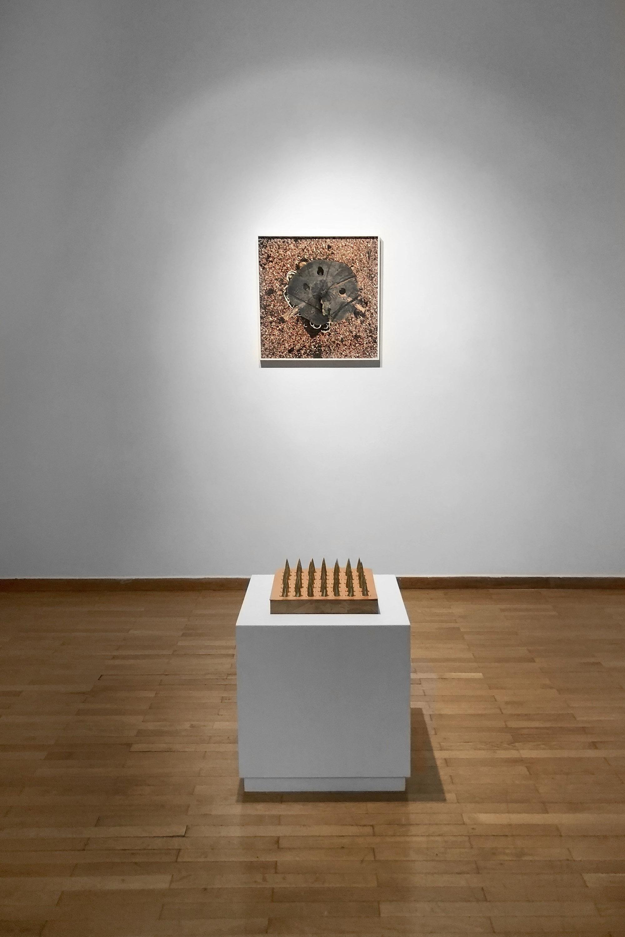 Margarita Myrogianni / Room of Punishment - Image 2